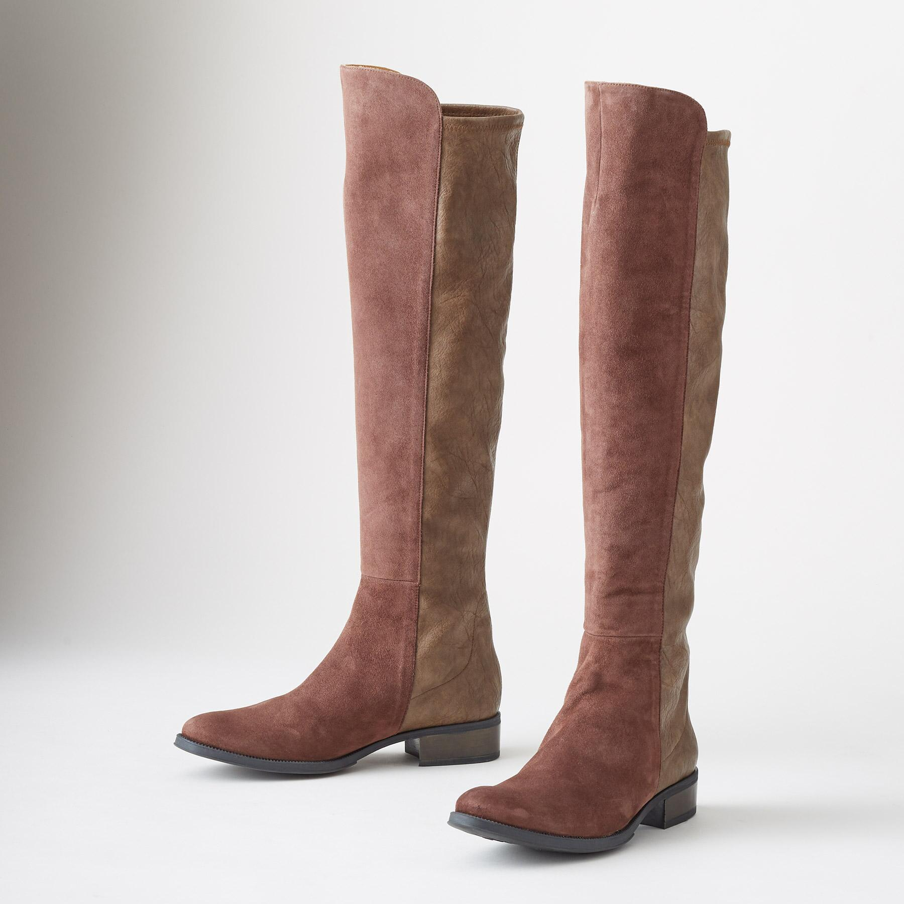 SUEDE SANDRINE BOOTS: View 1