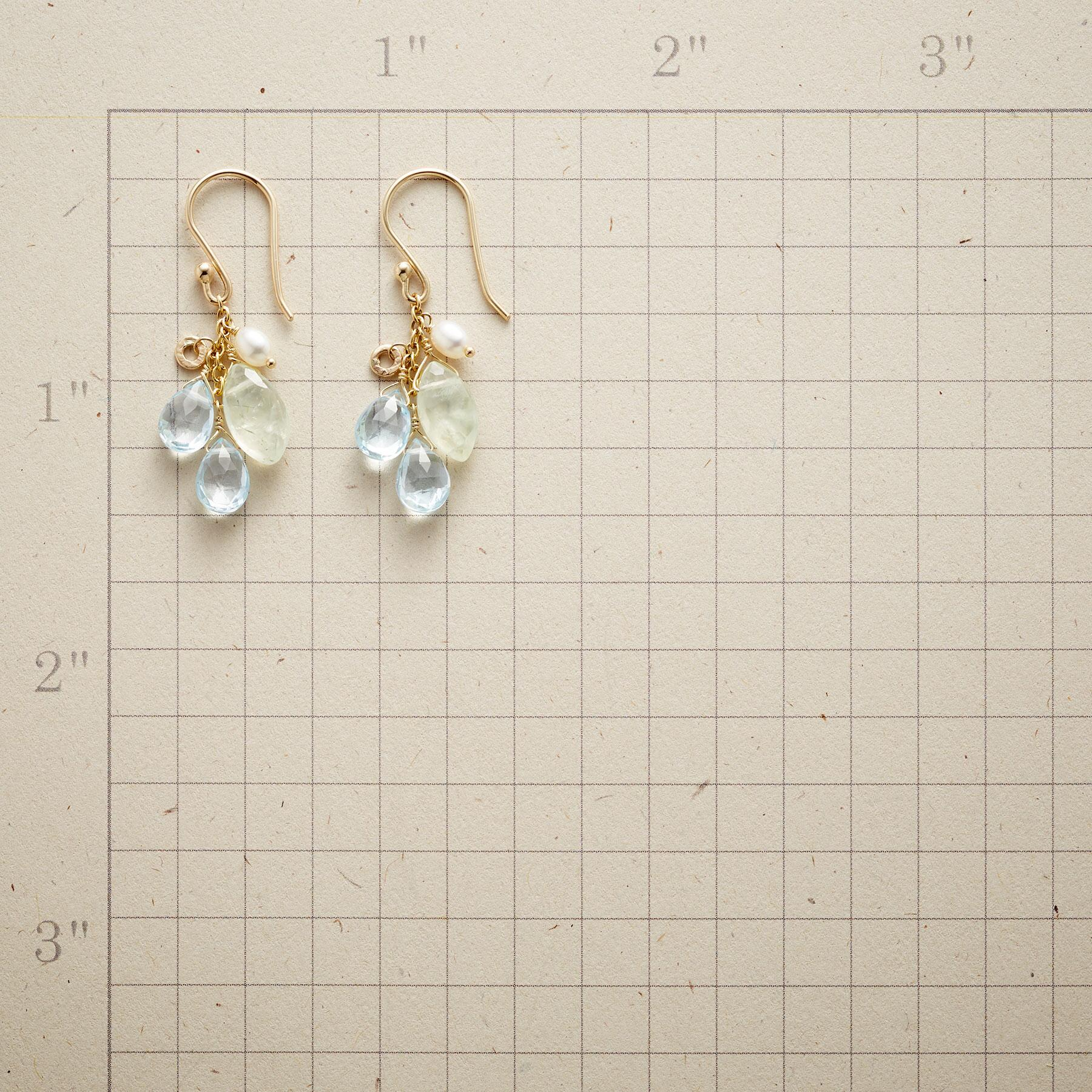 FANCIFUL FACETS EARRINGS: View 2