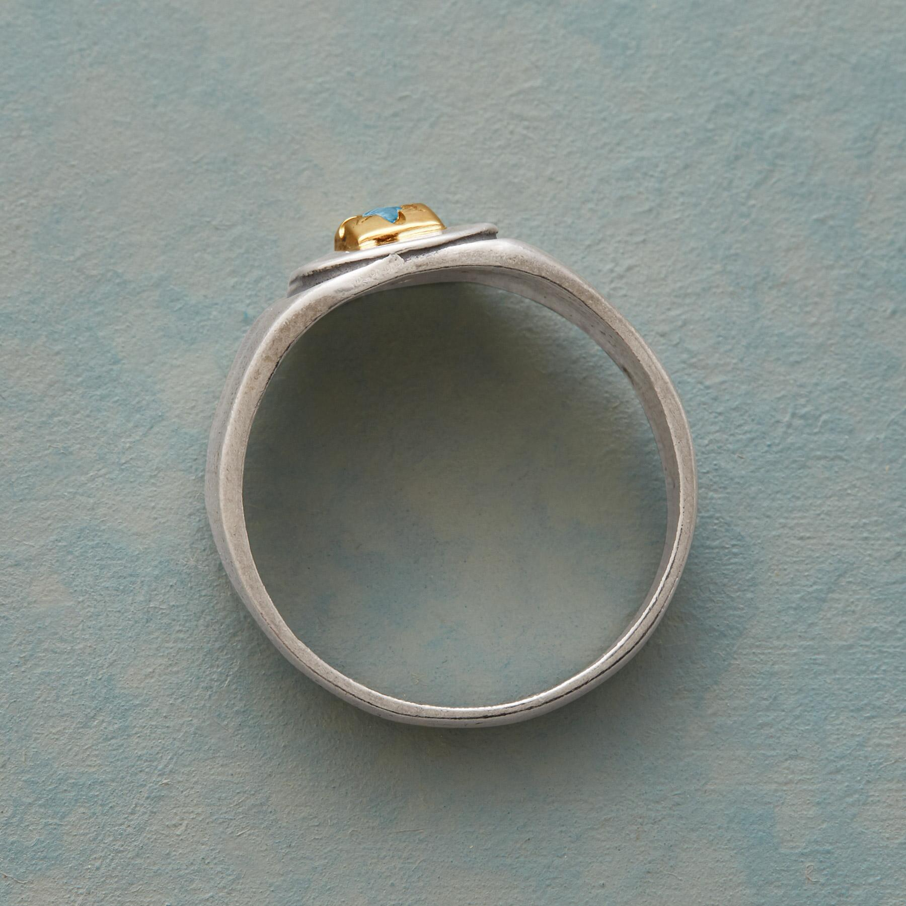 ONE WISH RING: View 2
