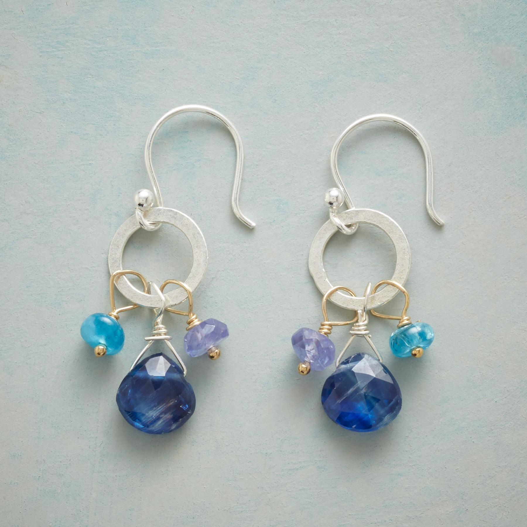 COUNTRY BLUES EARRINGS: View 1