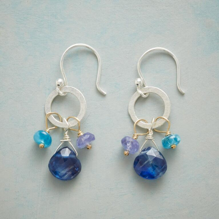 COUNTRY BLUES EARRINGS