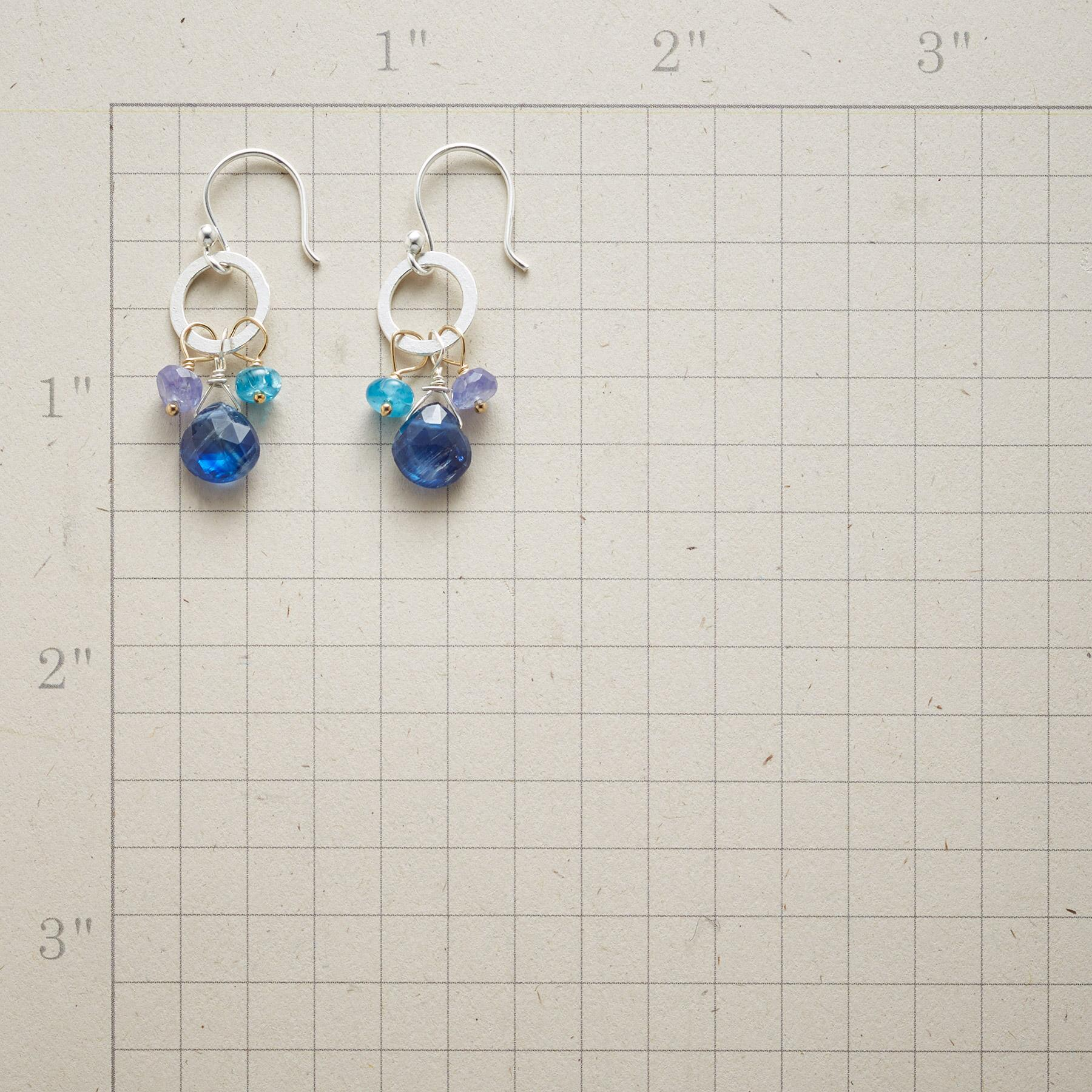 COUNTRY BLUES EARRINGS: View 2
