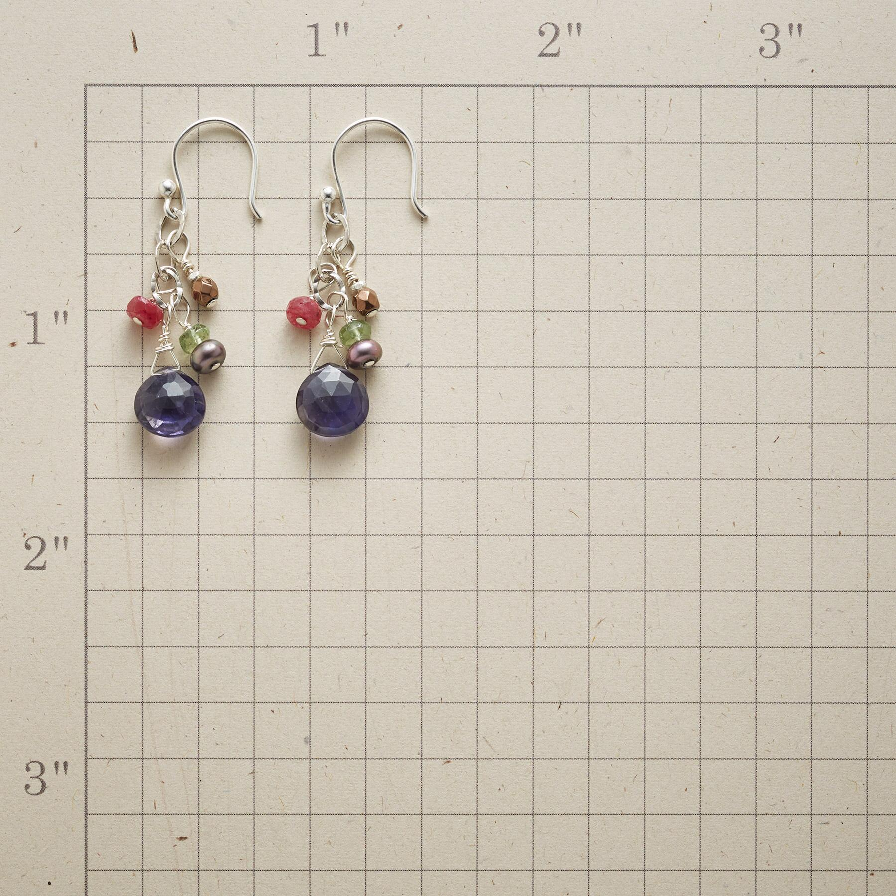MIDNIGHT REVELRY EARRINGS: View 2