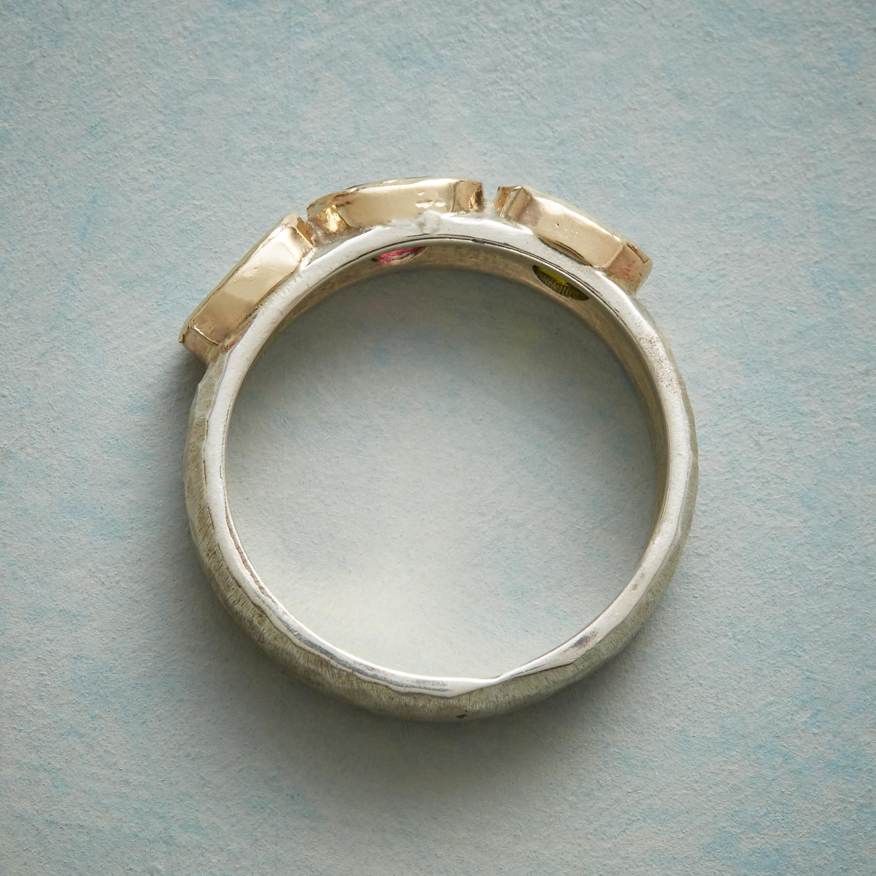 OCTAVIA RING: View 2
