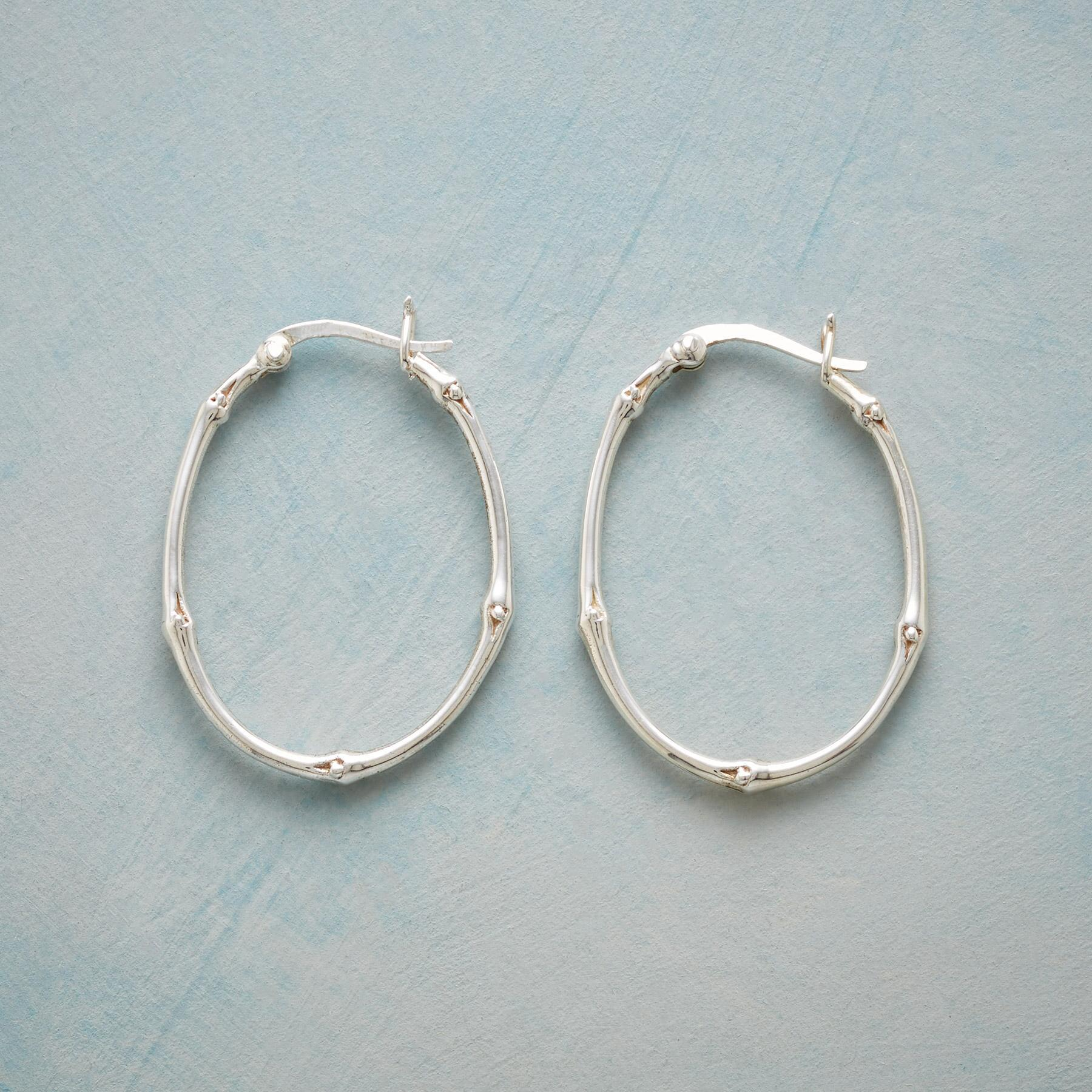 VINEYARD HOOP EARRINGS: View 1