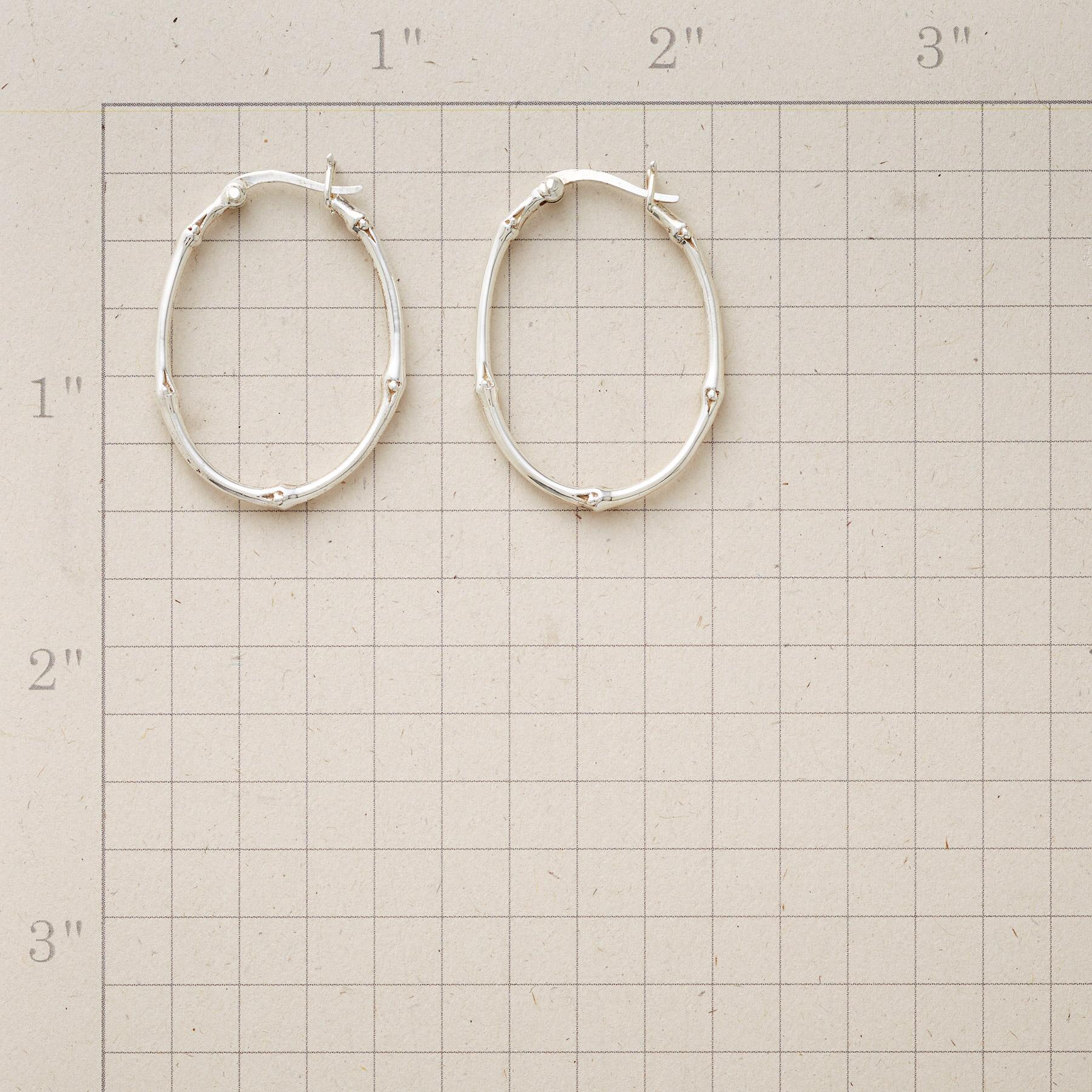 VINEYARD HOOP EARRINGS: View 2