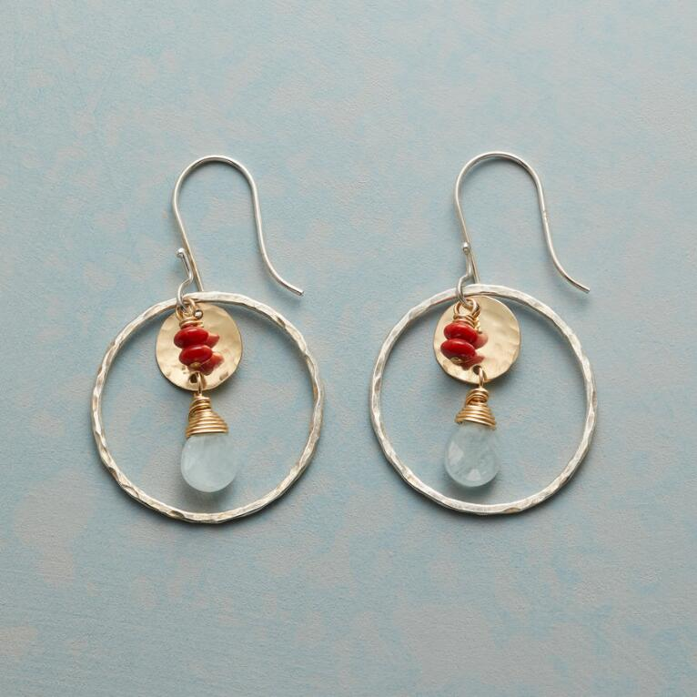 SPICE & ICE EARRINGS