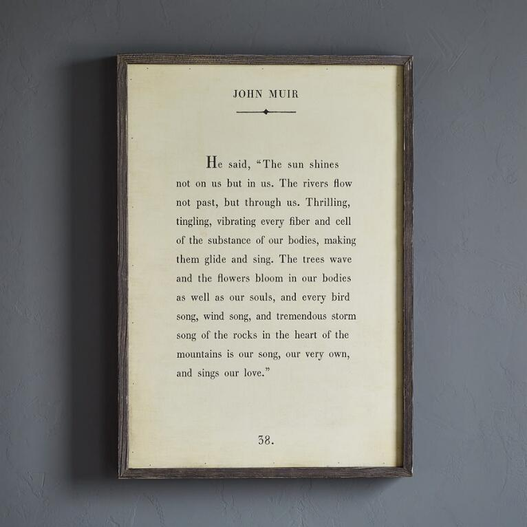 WORDS OF WISDOM BY JOHN MUIR PRINT