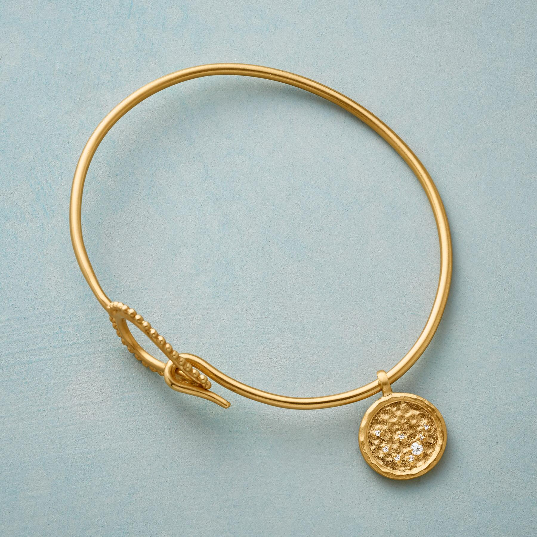 GOLD PLATE CHARMED ZODIAC: View 2