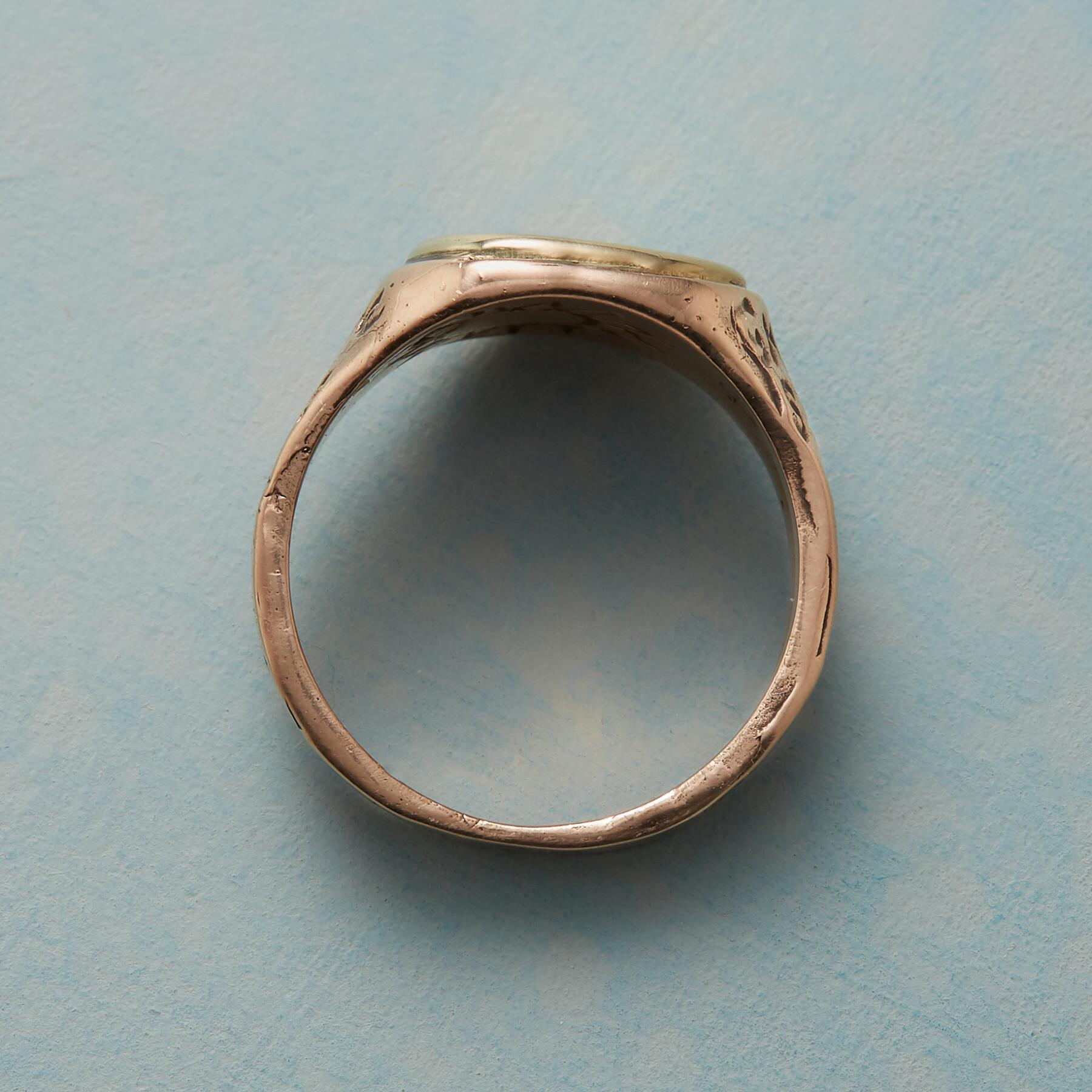 PERSONALIZED LIFE AFFIRMING RING: View 2