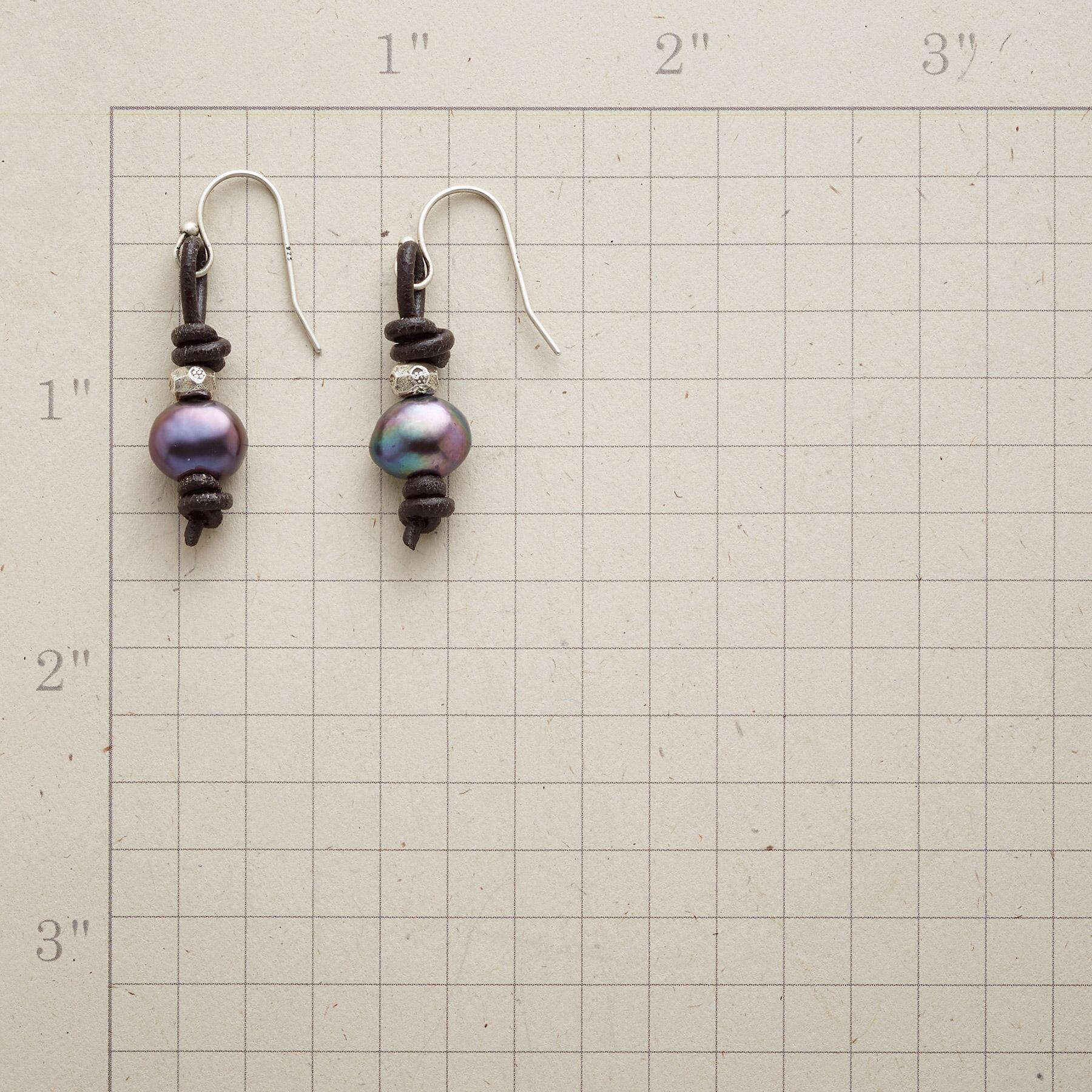 NIGHTS ON THE PRAIRIE EARRINGS: View 2