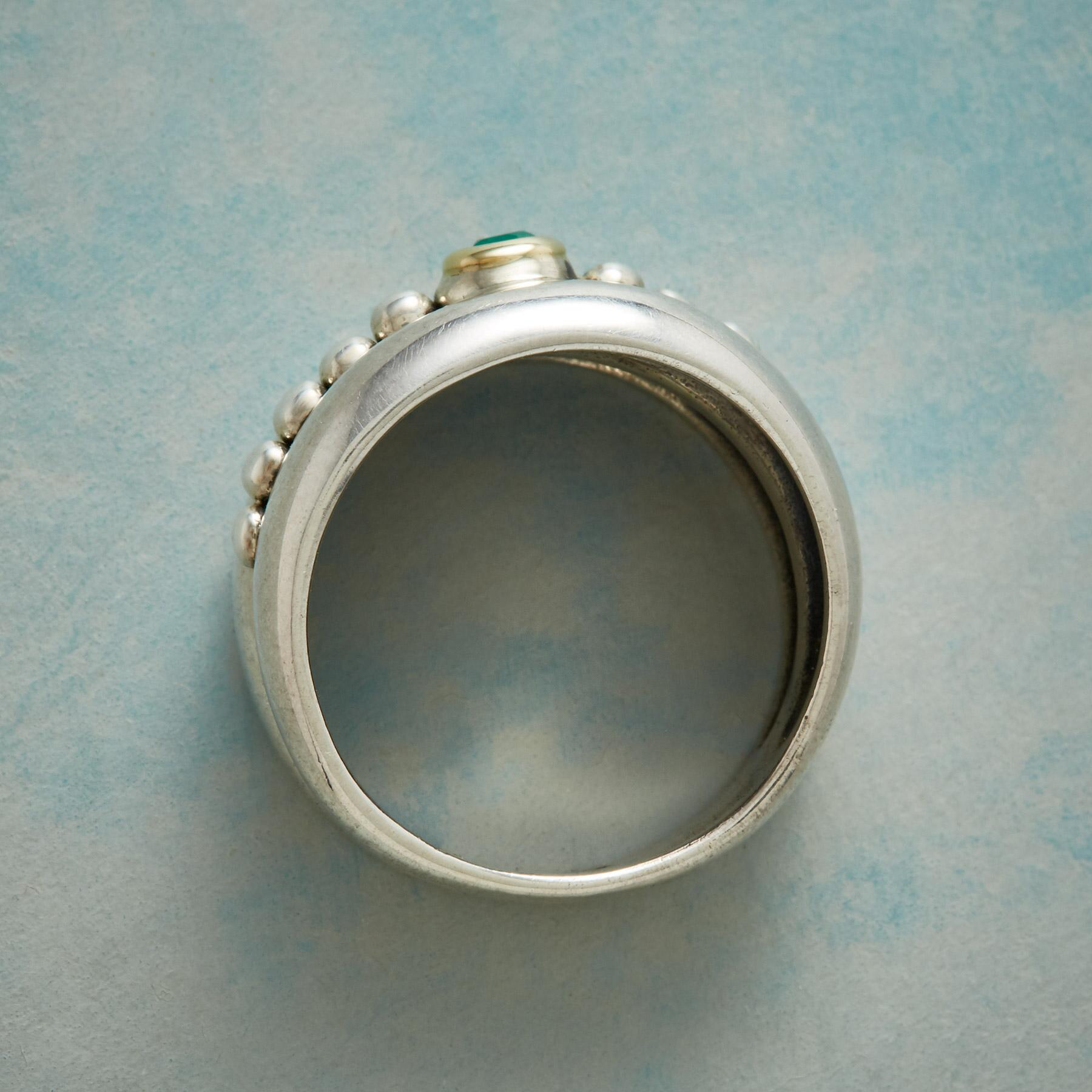 HEDGEROW RING: View 2