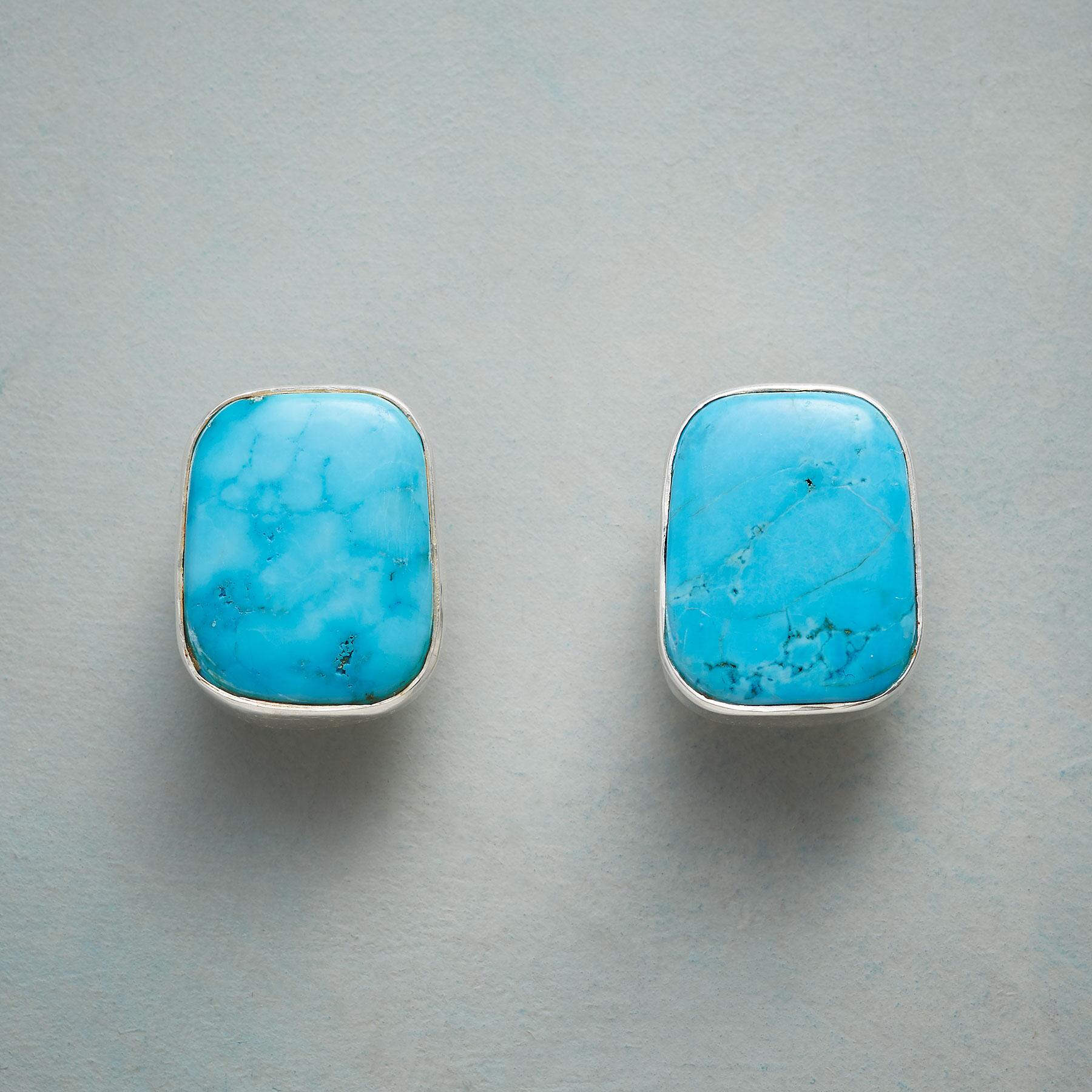 TERRA TURQUOISE EARRINGS: View 1