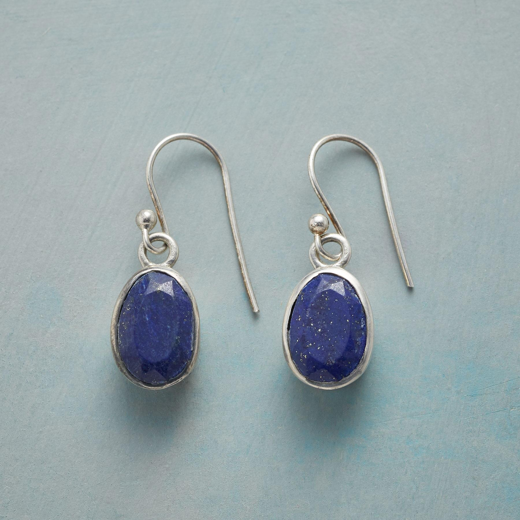 BLUE TERRAPENE EARRINGS: View 1