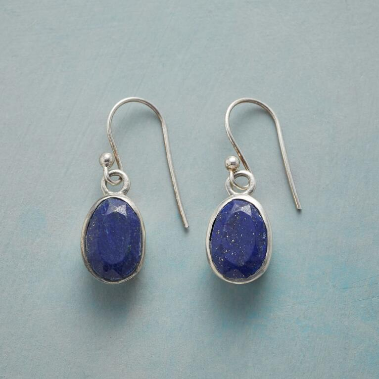 BLUE TERRAPENE EARRINGS