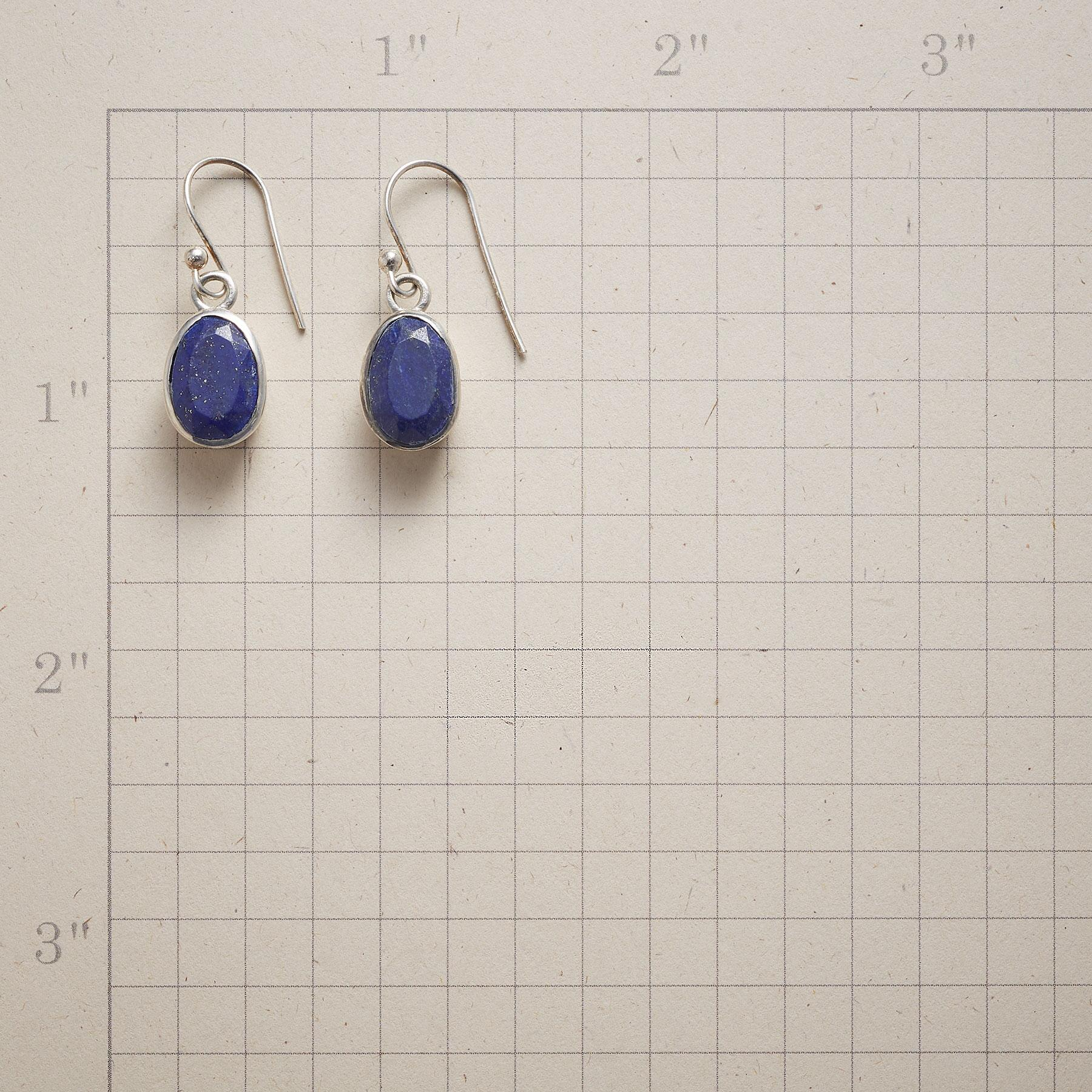 BLUE TERRAPENE EARRINGS: View 2
