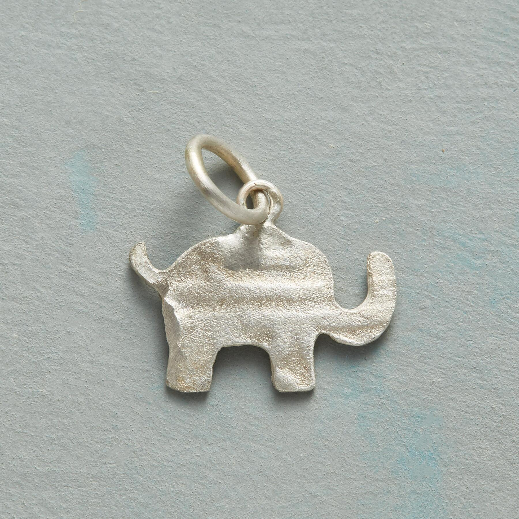 POSITIVE WISH ELEPHANT CHARM: View 1