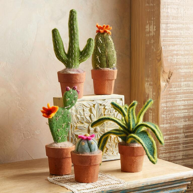 CLEVER CACTI
