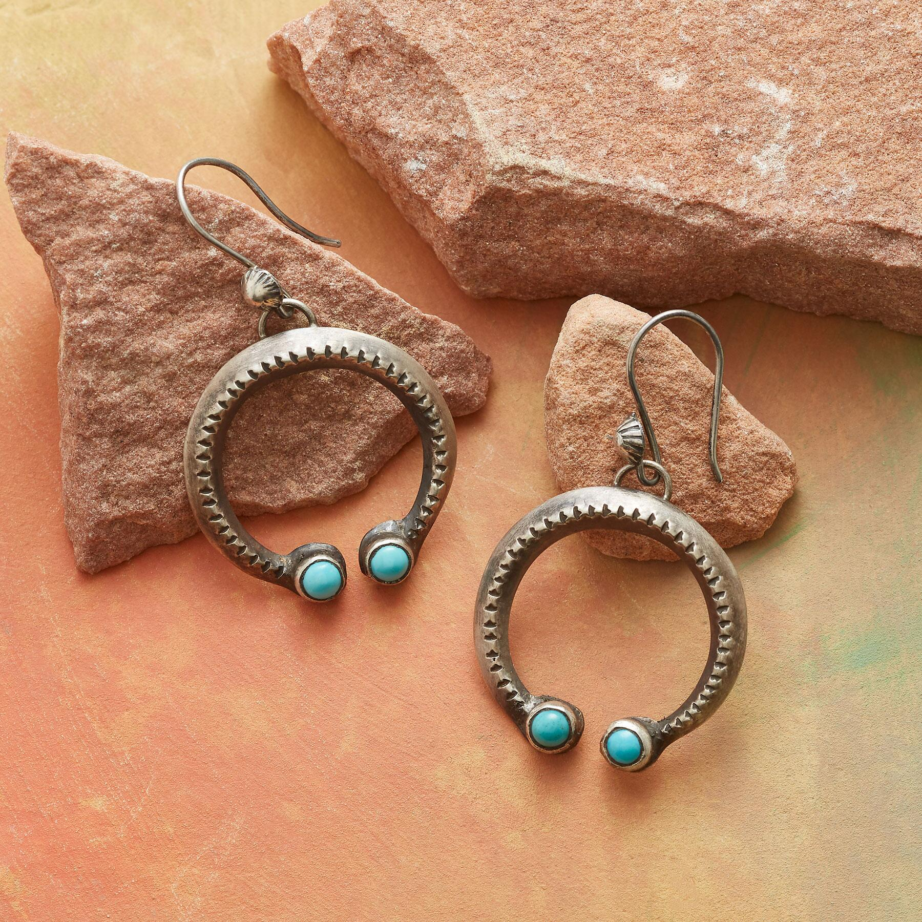 CHEYENNE TURQUOISE NAJA EARRINGS: View 1