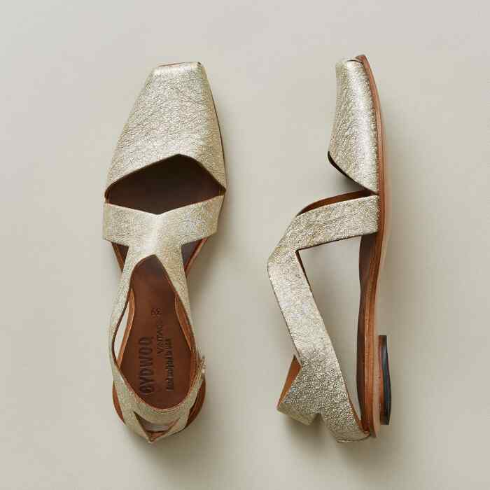 GOLIGHTLY SHOES