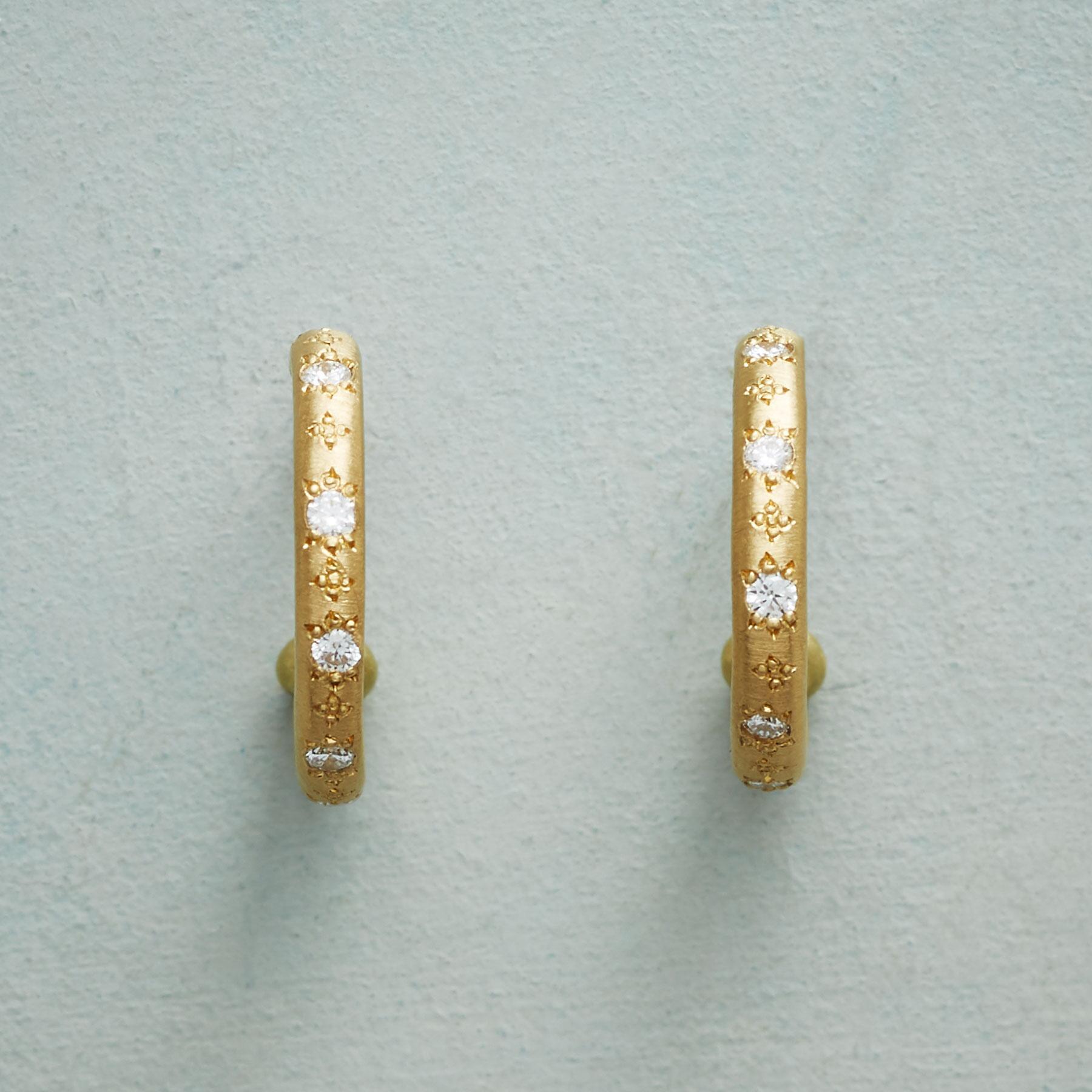 DIAMOND GARDEN HOOP EARRINGS: View 1