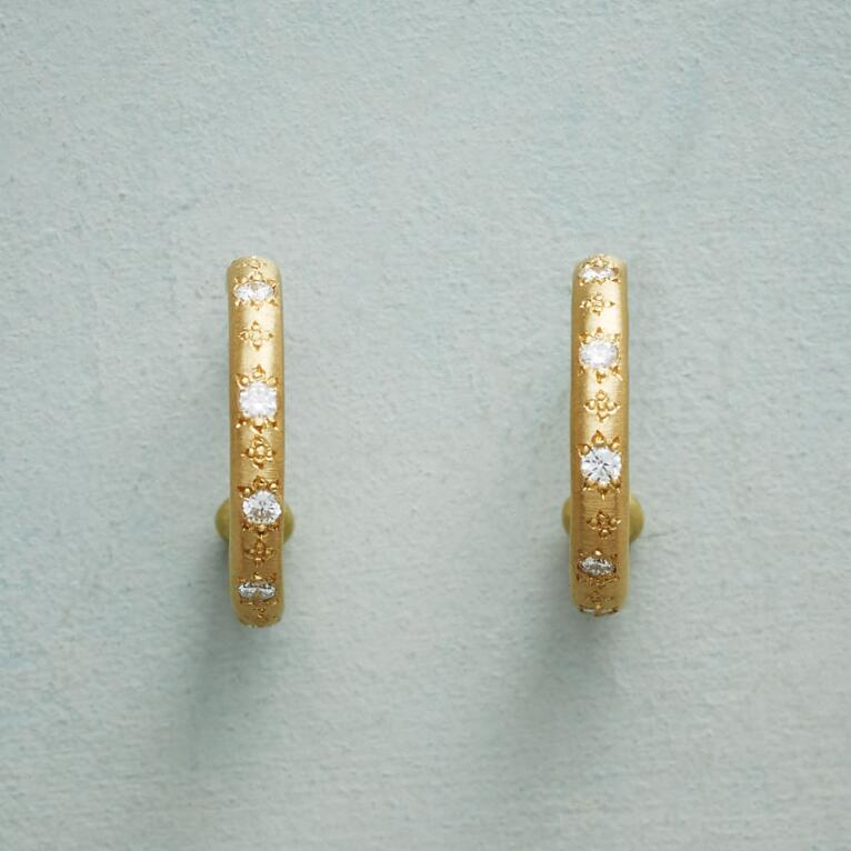 DIAMOND GARDEN HOOP EARRINGS
