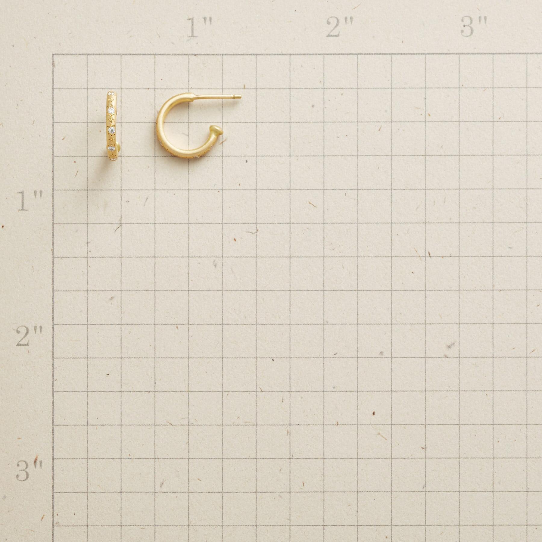 DIAMOND GARDEN HOOP EARRINGS: View 2