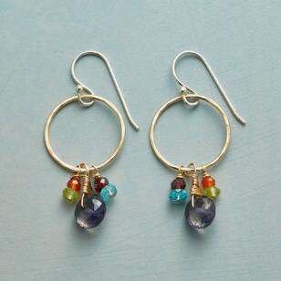COLOR WHEEL EARRINGS