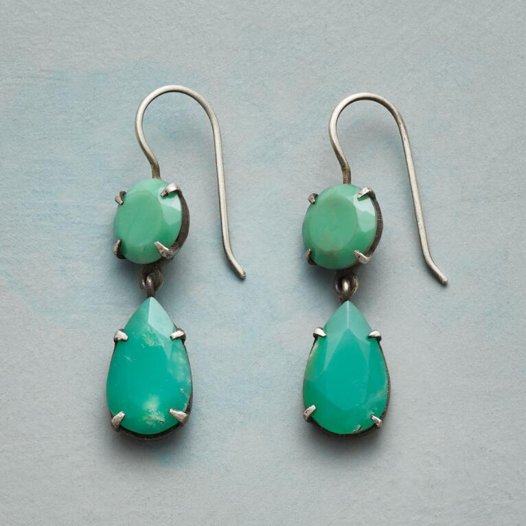VANTAGE POINT EARRINGS
