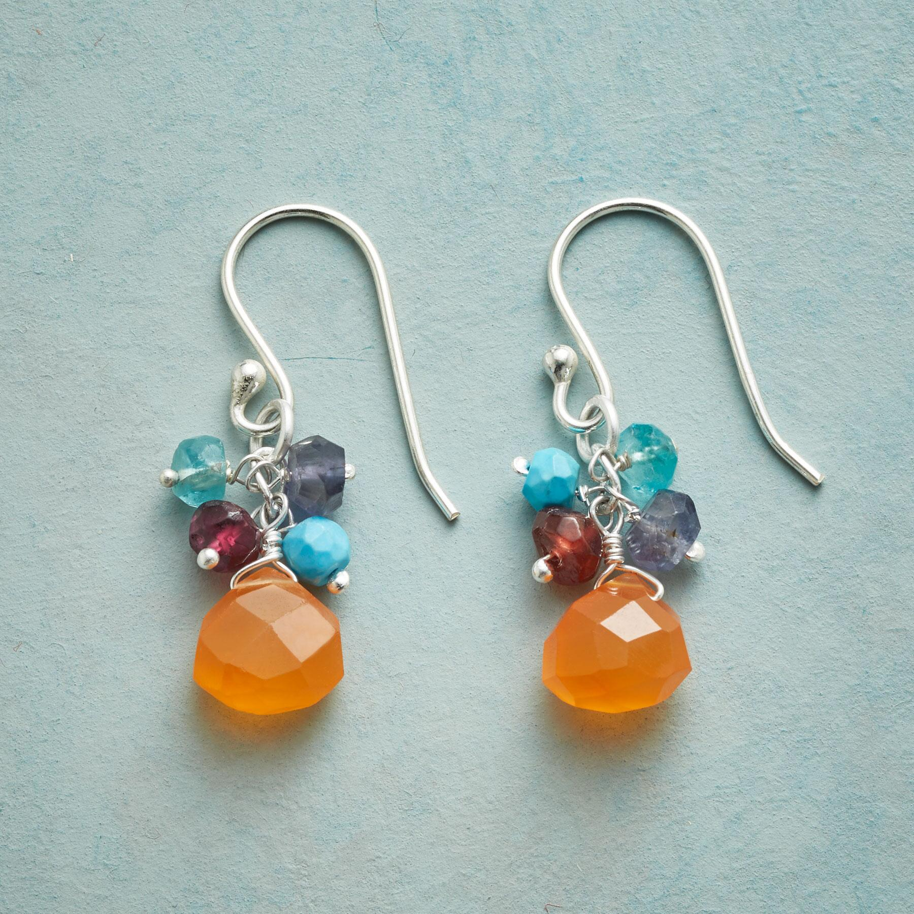 CARNELIAN AMULET EARRINGS: View 1