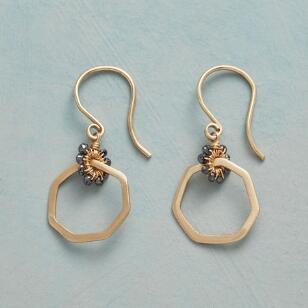 CAPTIVATION EARRINGS