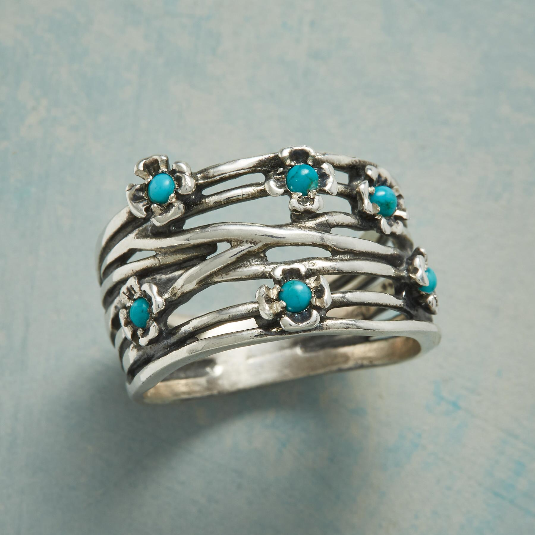 TURQUOISE DUNES RING: View 1