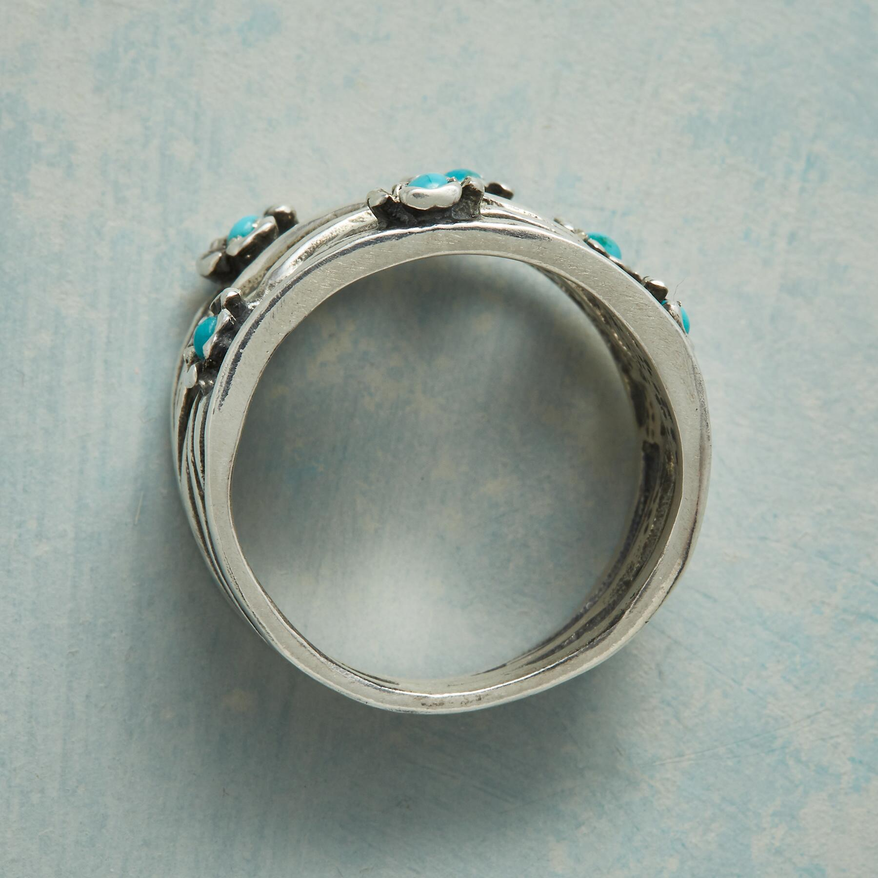 TURQUOISE DUNES RING: View 2