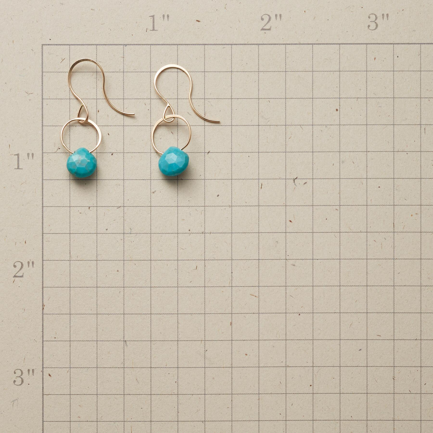TURQUOISE SONG EARRINGS: View 2