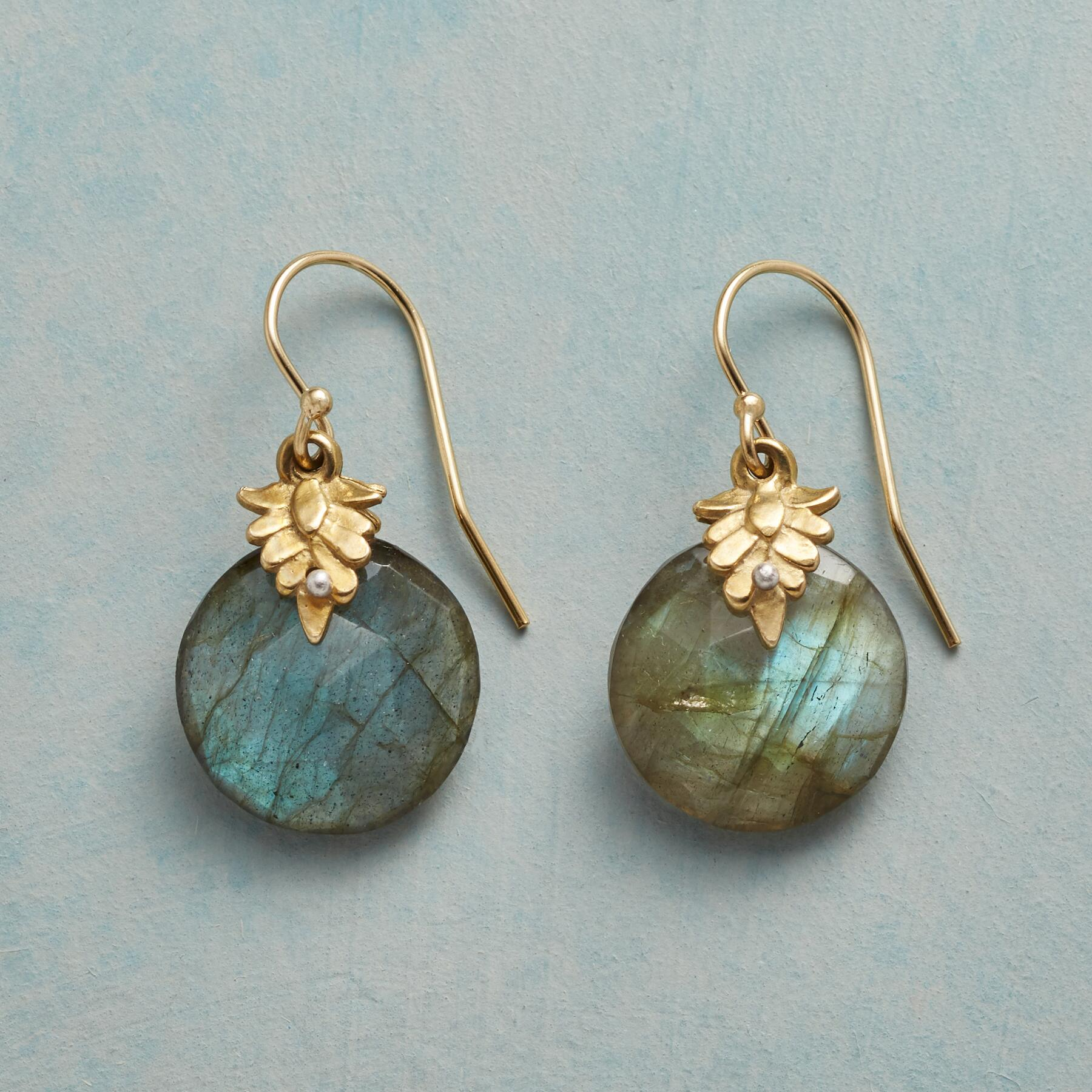LEAFY LABRADORITE EARRINGS: View 1