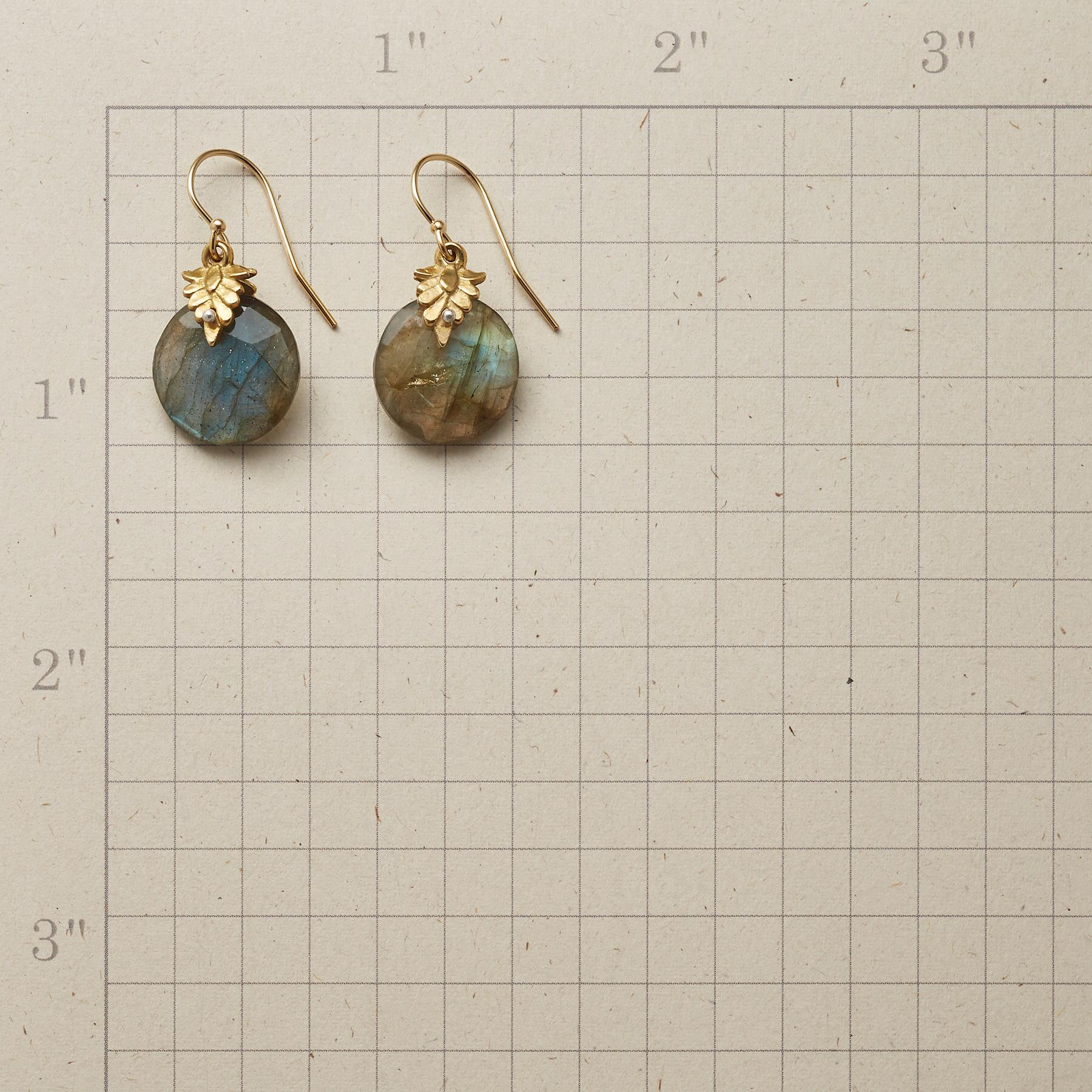 LEAFY LABRADORITE EARRINGS: View 2