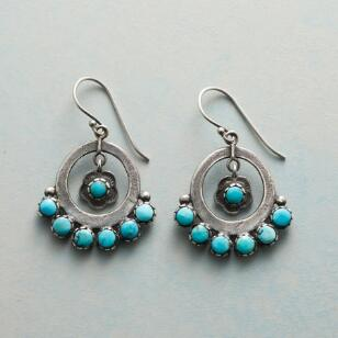 SPLENDOR IN THE SOUTHWEST EARRINGS