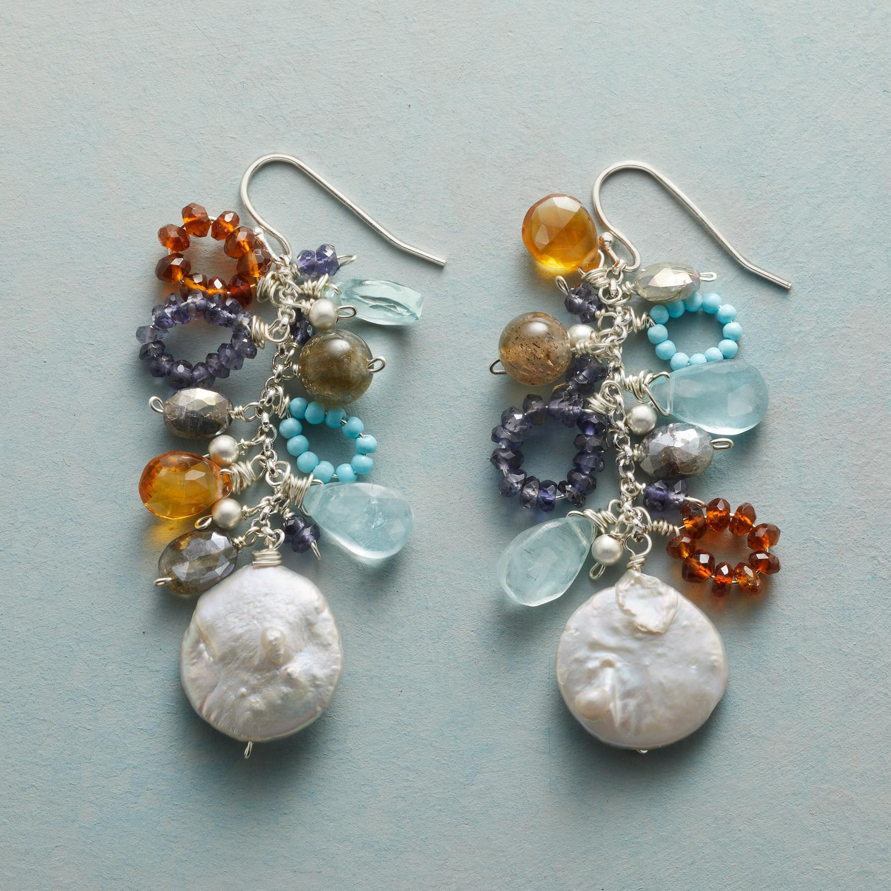 SECLUDED INLET EARRINGS: View 1