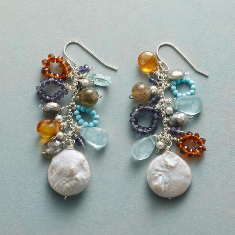 SECLUDED INLET EARRINGS