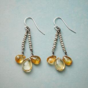 SUBDUED SHINE EARRINGS
