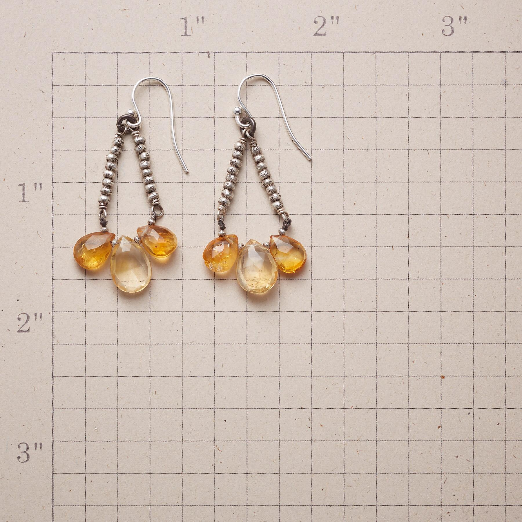 SUBDUED SHINE EARRINGS: View 2