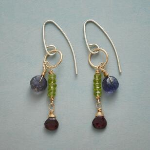 GEMSTONE DUET EARRINGS