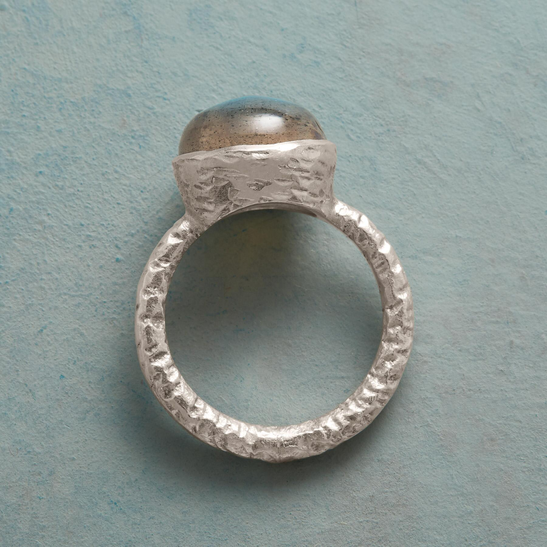 GLIMPSING A DREAM RING: View 2