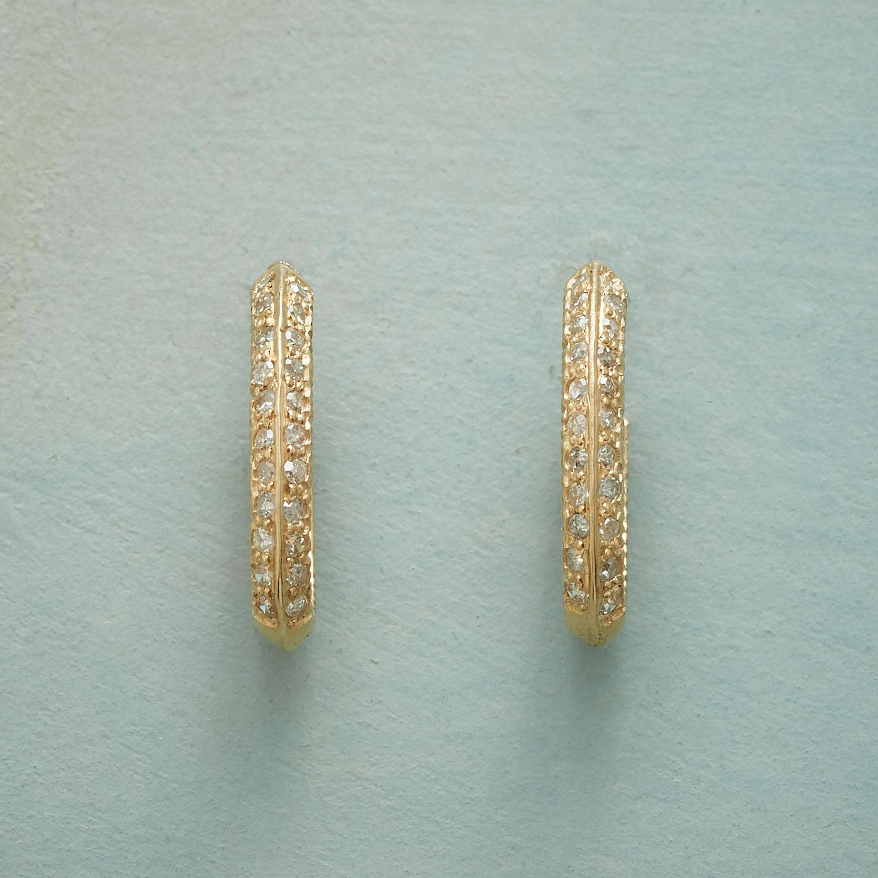OMNI DIAMOND HOOP EARRINGS: View 1