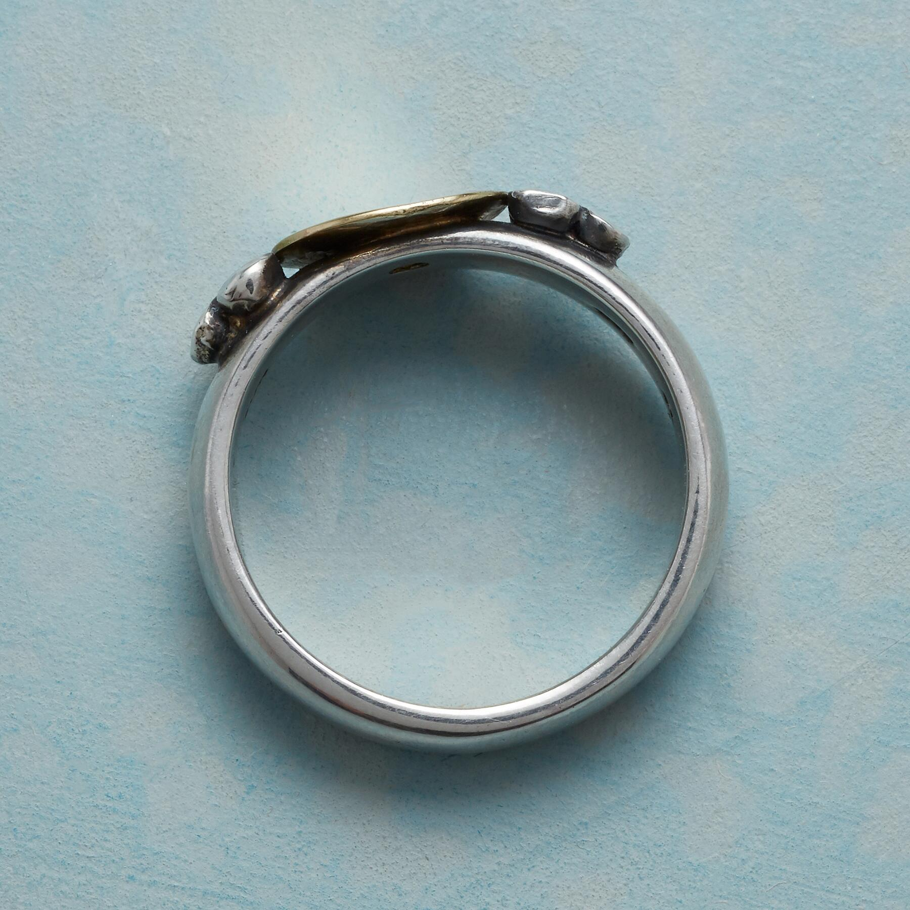 GOLDEN OFFERING RING: View 2