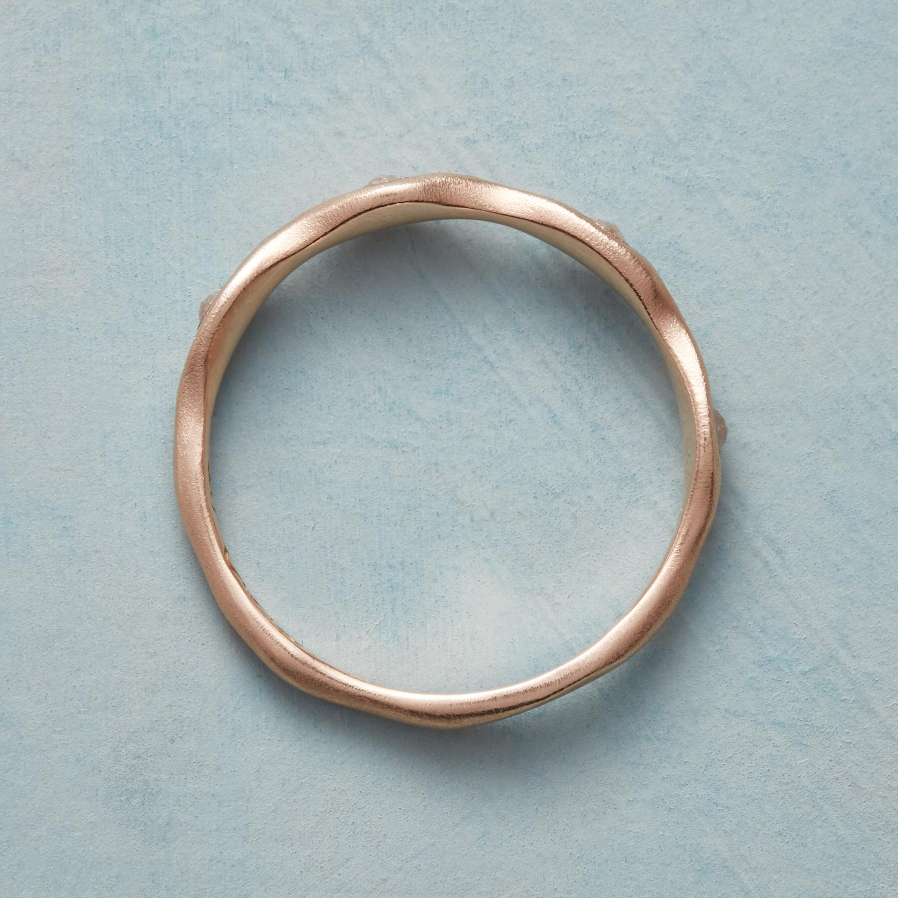 DIAMOND CAROUSEL RING: View 2