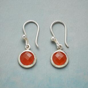 CITRUS SEASON EARRINGS