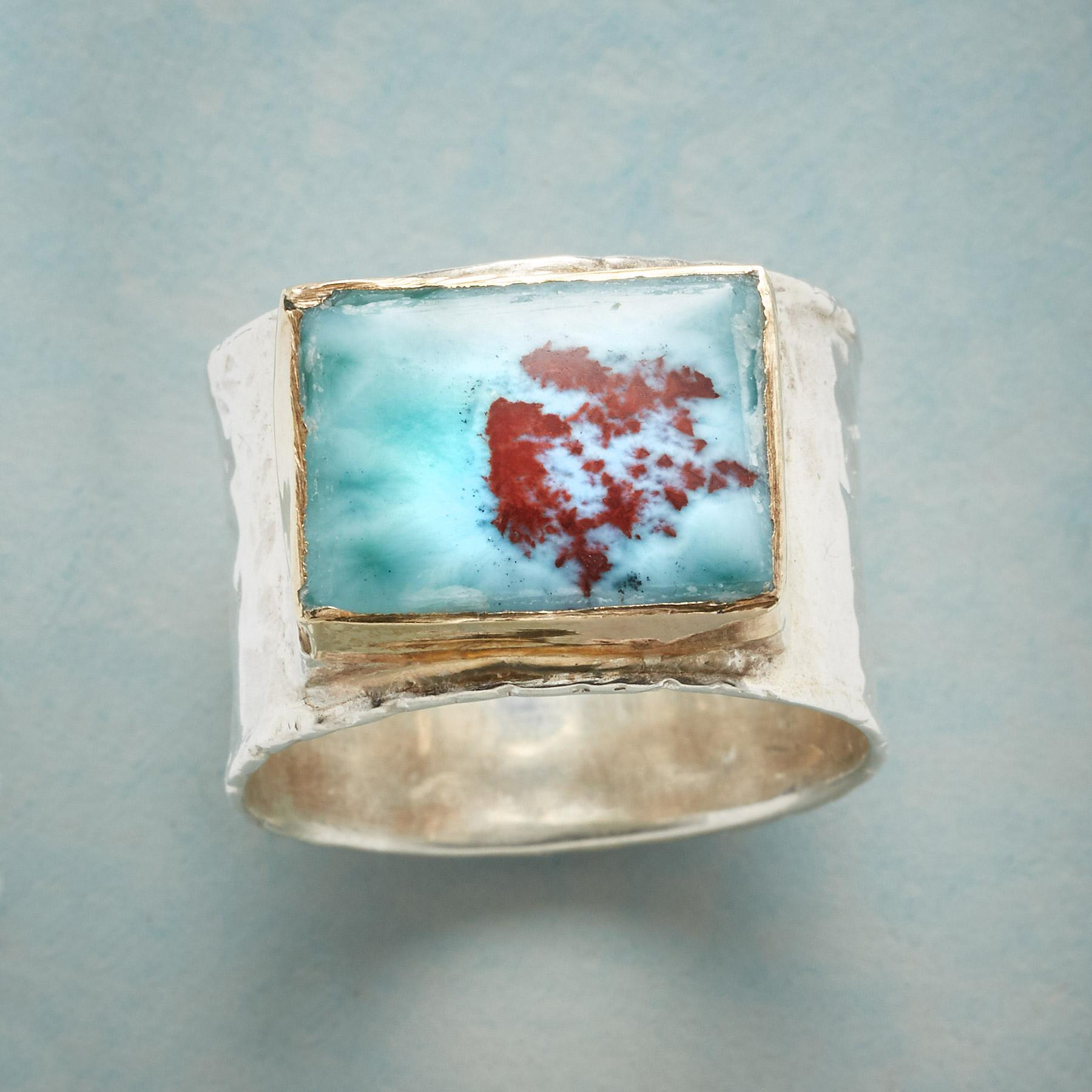 SKY VIEW RING: View 1