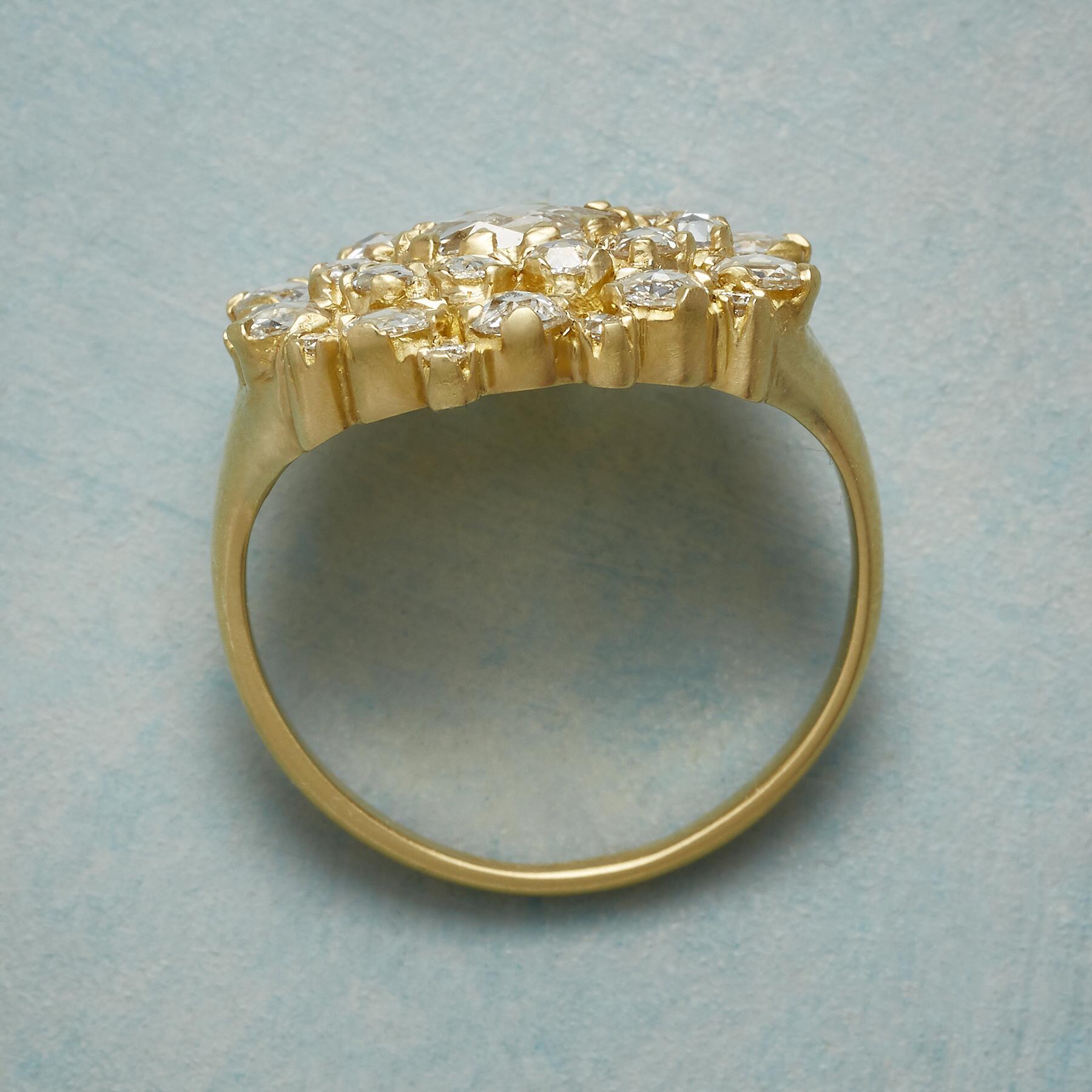 DIAMOND PROFUSION RING: View 2