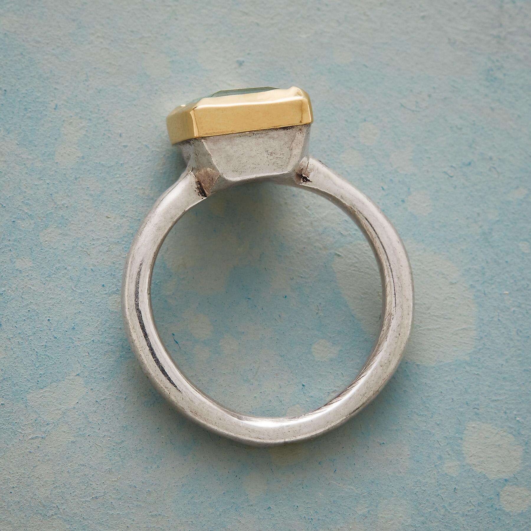 NIGHTINGALE RING: View 2